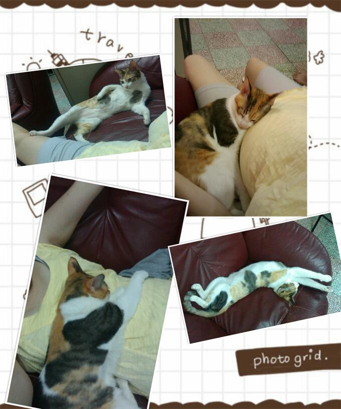 PhotoGrid_1351441196725